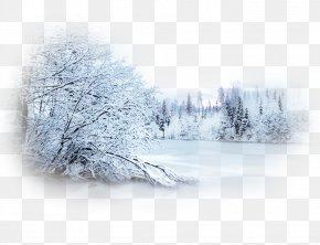 Snow - Snow Winter Blizzard Desktop Wallpaper Landscape PNG