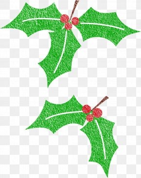 Christmas - Christmas Common Holly Clip Art PNG