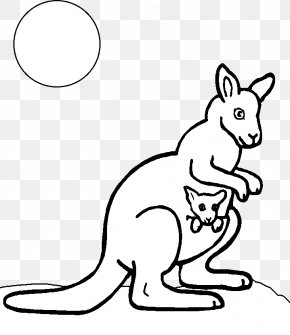Kangaroo Stick Figure - Red Kangaroo Coloring Book Child PNG