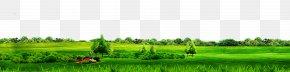 Green Simple Grass Border Texture - Biome Grassland Lawn Field Land Lot PNG