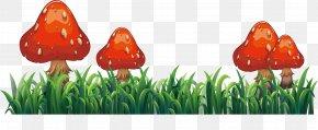 Red Mushroom - Flower Euclidean Vector Clip Art PNG
