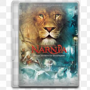 The Chronicles Of Narnia The Lion The Witch And The Wardrobe - Snout Wildlife Big Cats Roar Carnivoran PNG