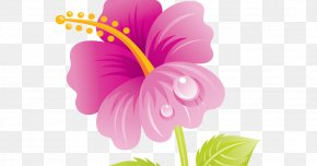 Mother's Day - Mother's Day Flower Bouquet Granny Clip Art PNG