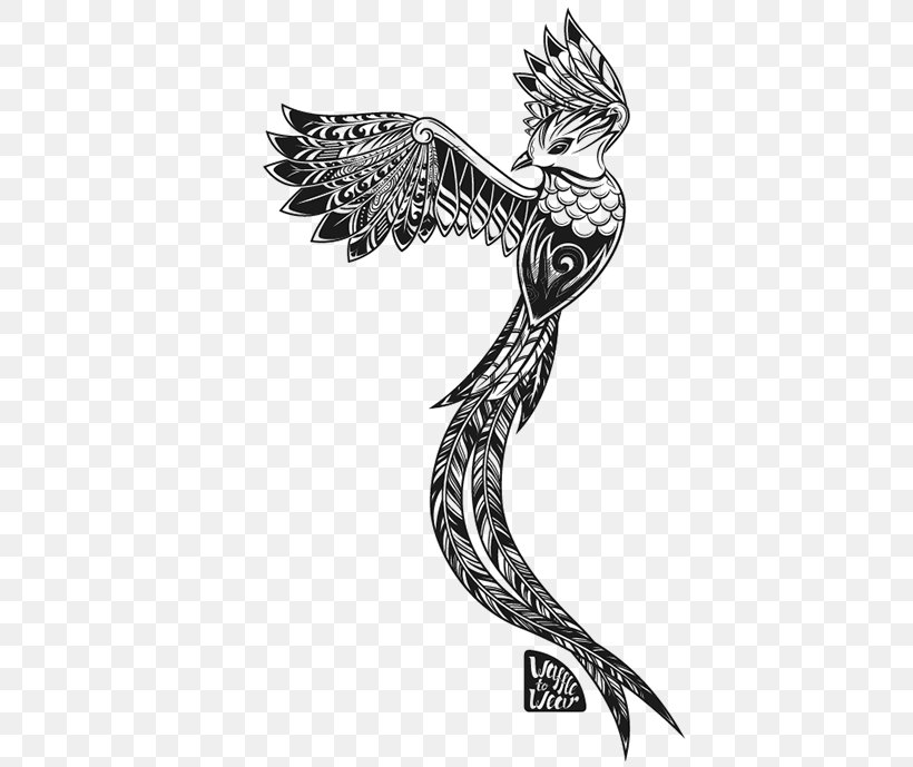 Guatemalan Quetzal Bird Drawing