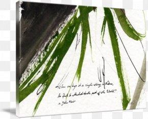 Leaf - Leaf Douchegordijn Grasses Plant Stem Shower PNG