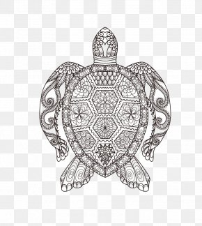 Vector Turtle - Coloring Book Adult Doodle Drawing Child PNG