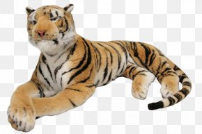 Tiger - Tiger Stuffed Toy PNG