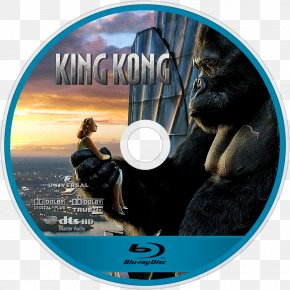 King Kong - King Kong Empire State Building YouTube Film Actor PNG