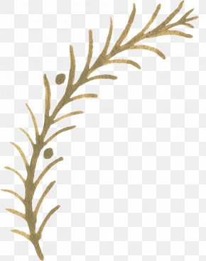 Hand-painted Plants - Twig Pattern PNG