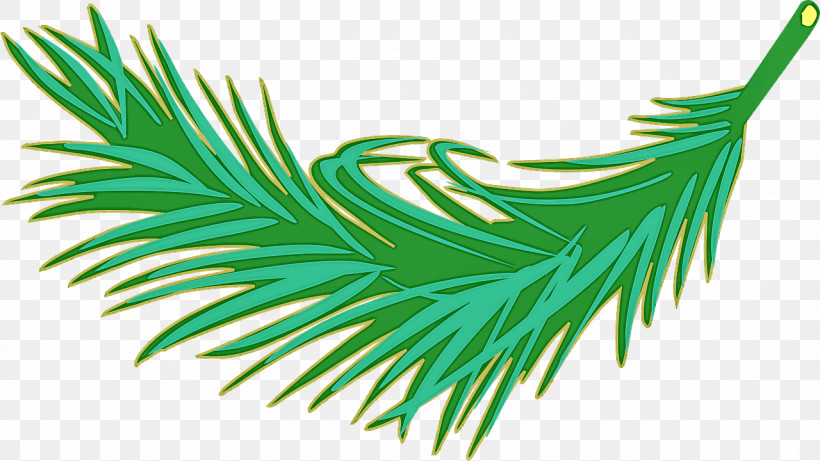 Green Leaf Tree Plant Grass, PNG, 1280x720px, Green, Grass, Leaf, Pine Family, Plant Download Free