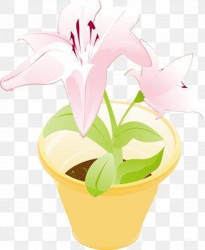 Vector Pot - Floral Design Flowerpot Clip Art PNG