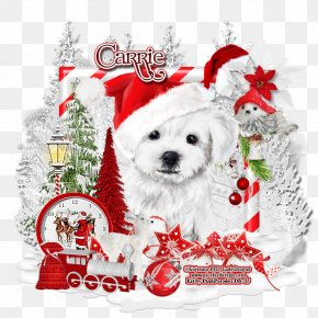 Creative Christmas Book - Dog Breed Puppy Companion Dog Christmas PNG