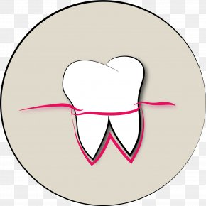 Zahn's Flowers - Mouth Cheek Tooth Dentist Tongue PNG