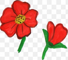 Watercolor Flower - Flowering Plant Cut Flowers Plant Stem Red PNG