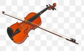 Violin - Violin Musical Instrument Chordophone String Instrument Membranophone PNG