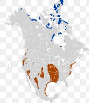 Map - Sierra Nevada Sierra Madre Occidental Sierra Madre Oriental Cascade Range Great Basin PNG