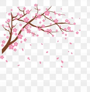 Vector Cherry - Cherry Blossom Clip Art PNG