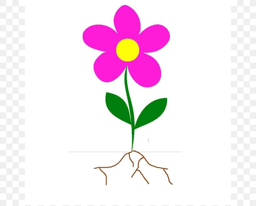 Flower Root Plant Stem Clip Art, PNG, 660x660px, Flower, Artwork, Blog, Branch, Bud Download Free
