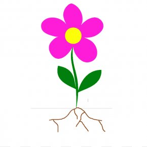 Flower Stem Template - Flower Root Plant Stem Clip Art PNG
