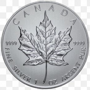 Canada - 150th Anniversary Of Canada Canadian Silver Maple Leaf Canadian Gold Maple Leaf PNG