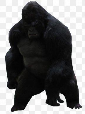 Gorilla - Gorilla Grodd Western Gorilla Common Chimpanzee Ape Killer Frost PNG