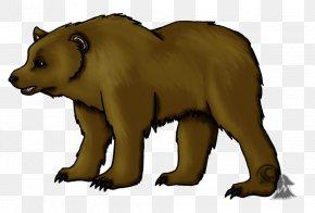 Bear - Brown Bear, Brown Bear, What Do You See? Kodiak Bear Grizzly Bear Drawing PNG