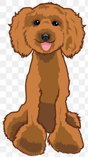 Poodle Dog - Dog Breed Puppy Poodle Spaniel Companion Dog PNG