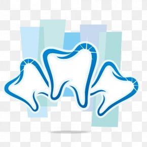 Three Teeth Vector - Human Tooth Dentistry Orthodontics PNG