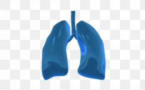 Lungs - Lung On A Chip Organ-on-a-chip Tissue PNG