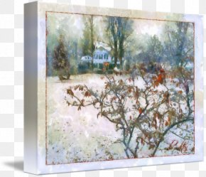 Painting - Watercolor Painting Picture Frames Branching PNG