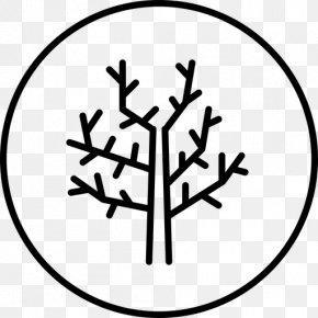 White Tree Of Gondor Clip Art - Clip Art Tree Image Branch PNG