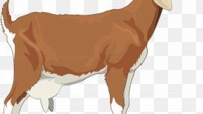 Sheep - Golden Guernsey Boer Goat Sheep Russian White Goat Clip Art PNG