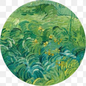 Starry Night - National Gallery Of Art Van Gogh Self-portrait Field With Green Wheat Green Wheat Field With Cypress PNG