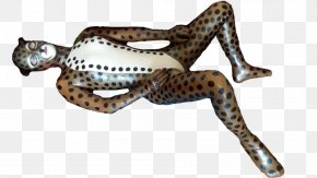 Cheetah - Cheetah Cat Lion Latex DeviantArt PNG