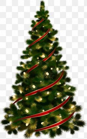 Christmas Tree Clip Art - Candy Cane Christmas Tree Christmas Ornament Clip Art PNG