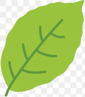 Clip Art Leaf Greens Plant Stem Product Design PNG