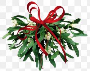 Mistletoe Cliparts Transparent - Mistletoe Christmas Clip Art PNG