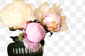 Still Life Photography Rose Family - Pink Flowers Background PNG