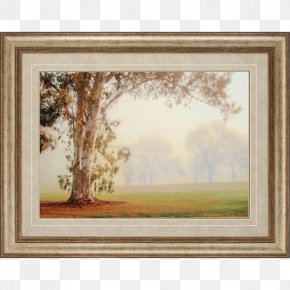 Eucalyptus - Picture Frames Window Watercolor Painting Art Printing PNG