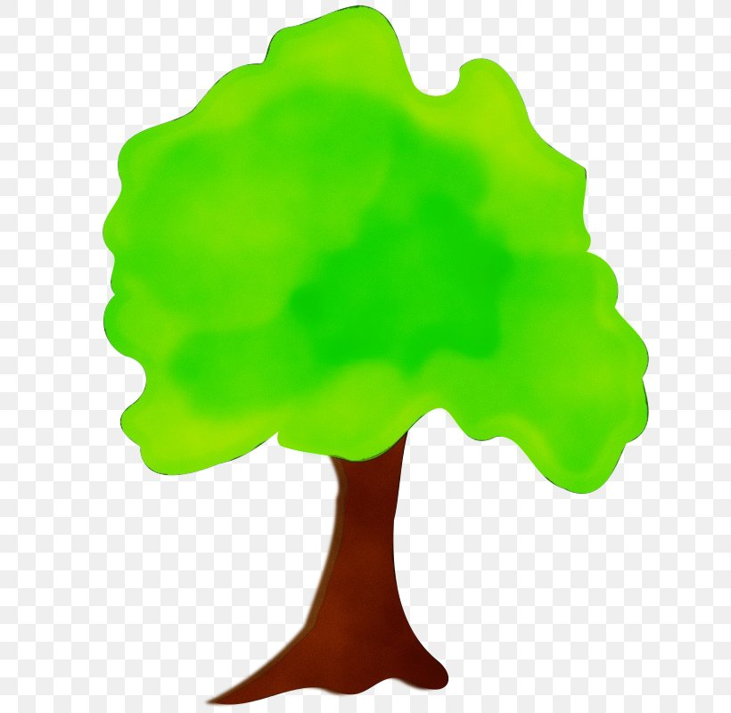 Green Leaf Tree Woody Plant Plant, PNG, 800x800px, Watercolor, Green, Leaf, Paint, Plant Download Free