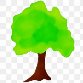 Symbol Plant - Green Leaf Tree Woody Plant Plant PNG