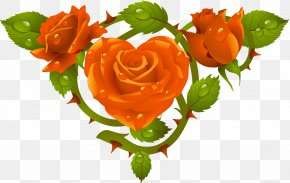 Rose Leaves - Rose Flower Stock Photography Clip Art PNG