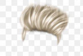 Hair - Long Hair Hairstyle Hair Coloring PNG