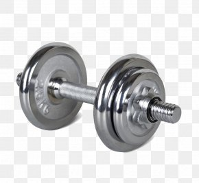 Arm Lifter - Dumbbell Olympic Weightlifting Barbell Bodybuilding Physical Exercise PNG