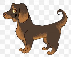 Dog Drawing Pictures - Boykin Spaniel Puppy Dog Breed Drawing PNG