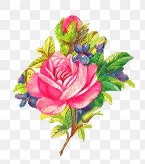 Watercolor Flowers - Flower Garden Roses Pink Clip Art PNG