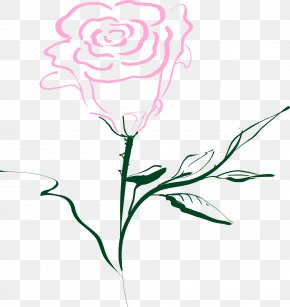 Flower Drawing - Rose Drawing Clip Art PNG