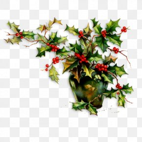 Christmas - Common Holly Christmas Ornament Clip Art PNG