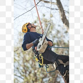 Saw Chain - Climbing Harnesses Belay & Rappel Devices Belaying Tree Safety Harness PNG
