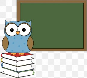 Chalkboard Book Cliparts - Owl School Education Clip Art PNG